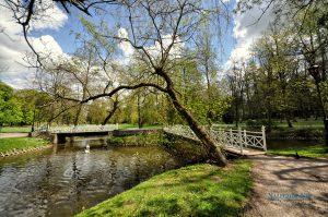naleczow park lipowa166 300x199